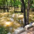 Creek has water!
